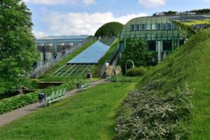 Ogród przy Bibliotece Uniwersyteckiej w Warszawie